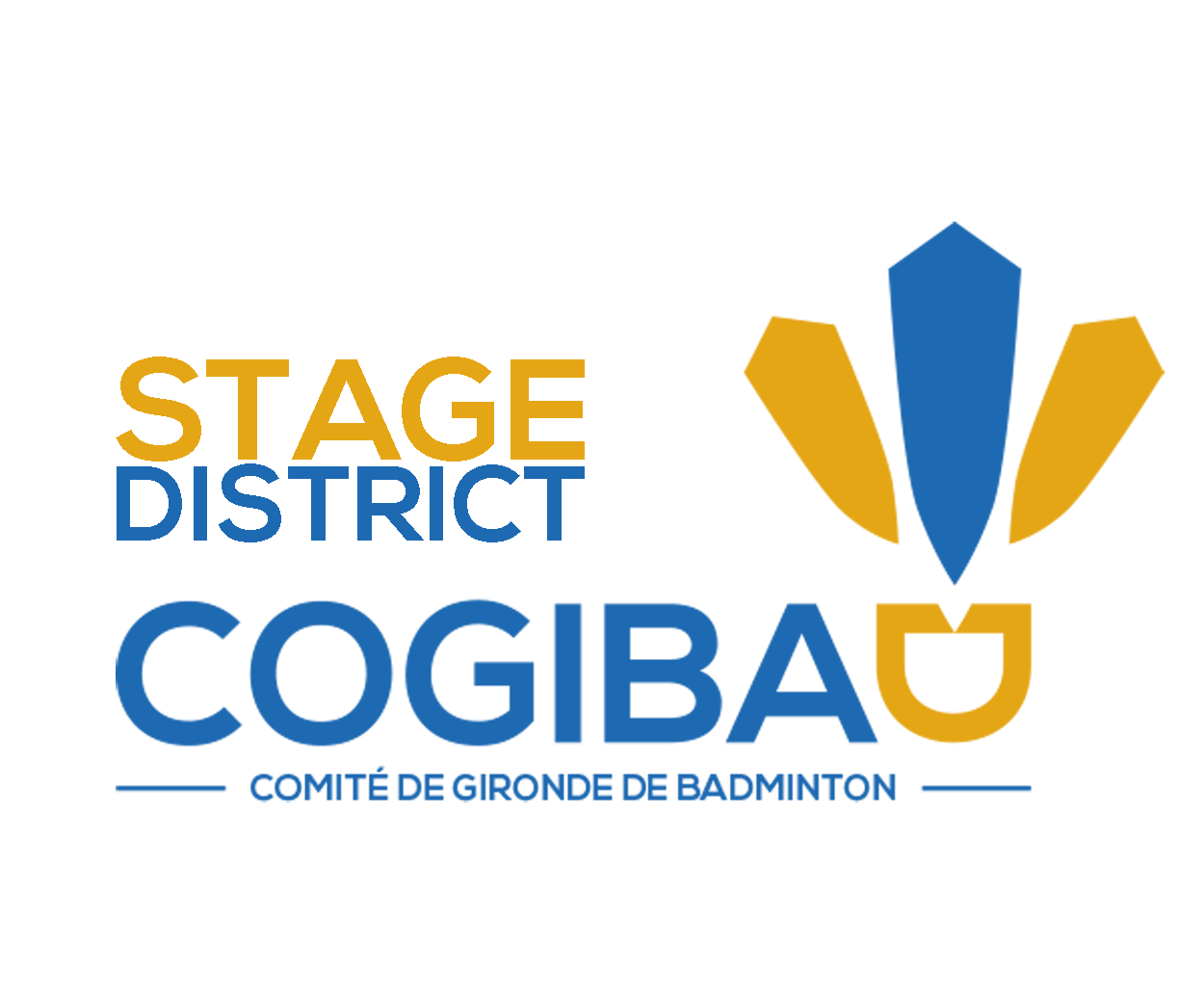 LOGO COGIBAD stage district